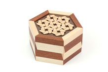 Edelweiss Puzzlebox (no. 28) by Robert Yarger and William Waite